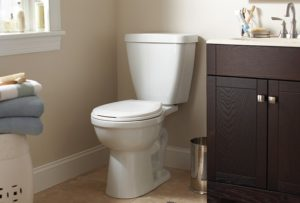 Toilet install US Plumbing and Gas
